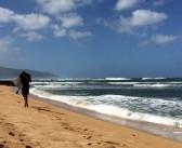 Haleiwa – Das Tor zum 7-Meilen Wunder North Shore