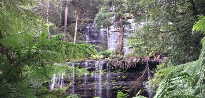 Russell Falls – Beeindruckender Wasserfall mit toller Aussicht