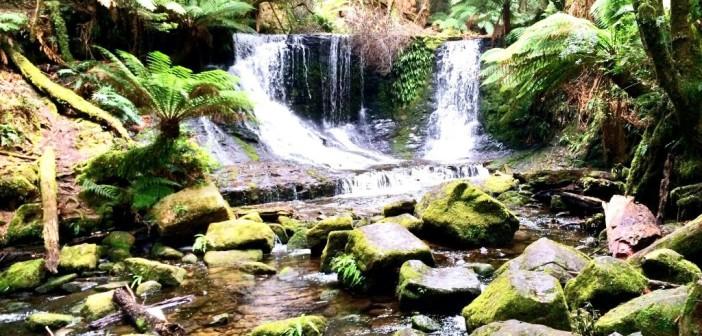 Horseshoe Falls – Wasserfälle im Mount Field Nationalpark